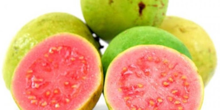 Love Guava? Check Out Its Amazing Benefits