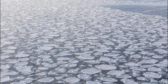 Greenland melting linked to shrinking Arctic sea ice
