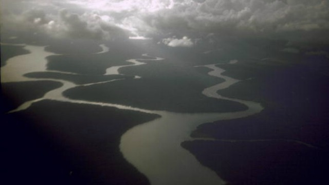 New coral reef system found at mouth of Amazon River