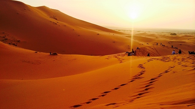 6,000 years ago, Sahara was a grassland: Study