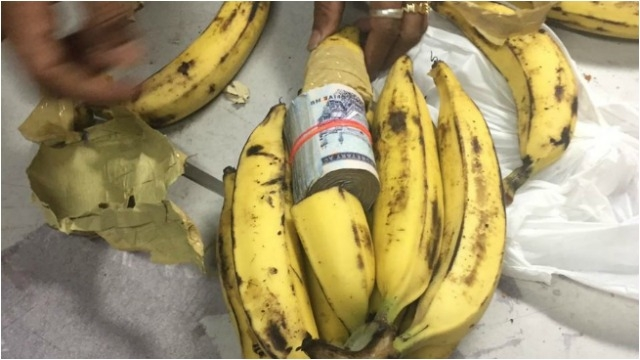 Kerala: DRI recovers Rs 45.69 lakh concealed in bunch of bananas