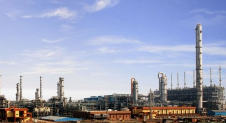 Narendra Modi govt plans to set up petrochemical clusters: Pradhan