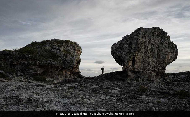 Climate Scientists Are Obsessed With Two Mysterious Boulders In The Bahamas